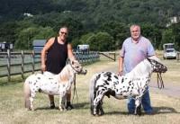 araki-horse-with-ken-and-adrian